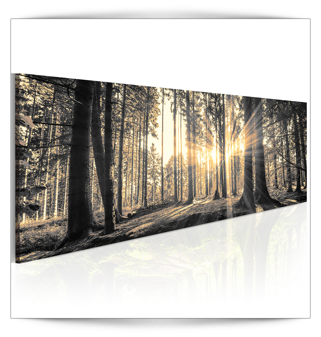 bilder leinwand wandbilder kunstdruck gro e auswahl wald strand natur dkb0005 ebay. Black Bedroom Furniture Sets. Home Design Ideas