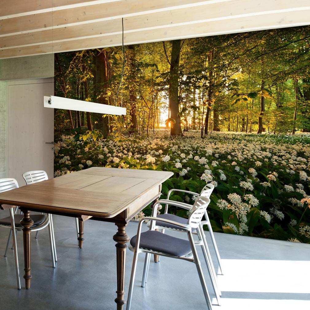 VLIES FOTOTAPETE Wald Blumen Ausblick TAPETE Schlafzimmer WANDBILDER