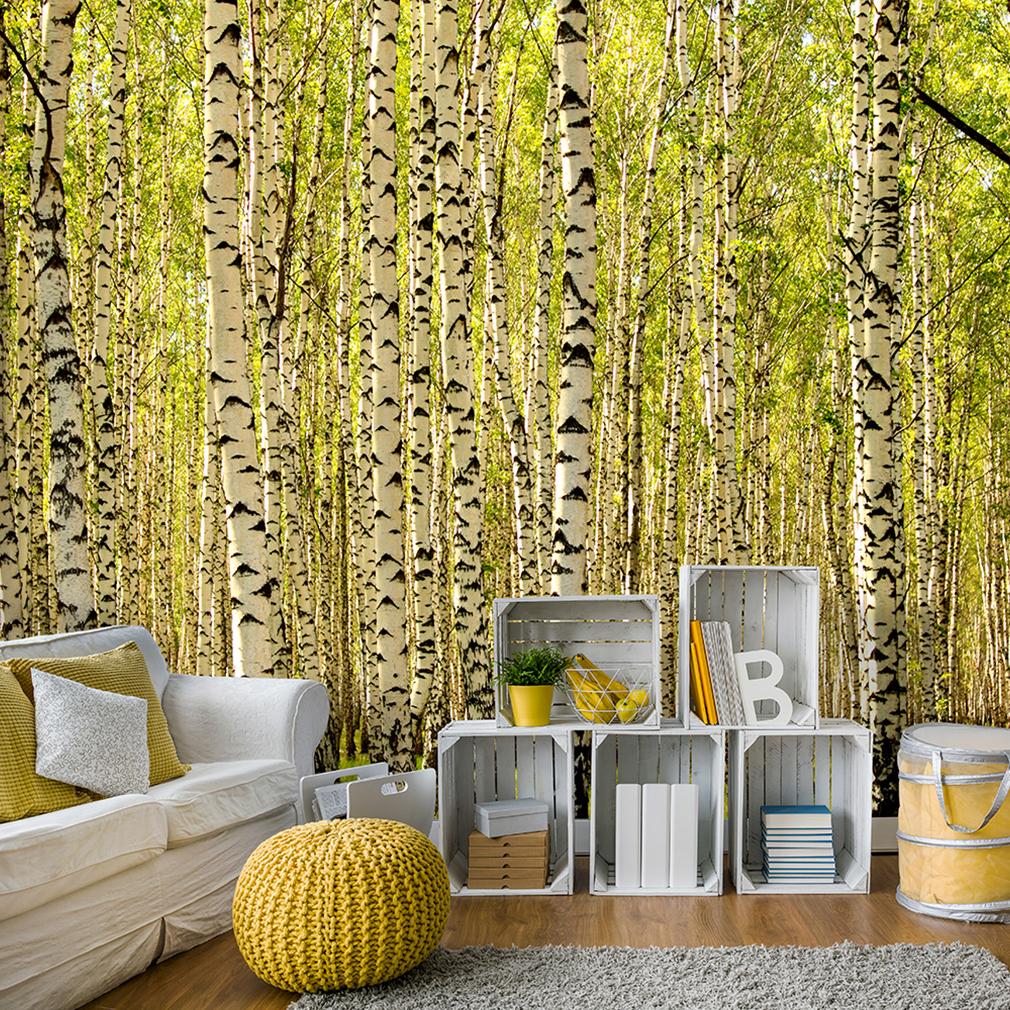 Vlies fototapete birkenwald birke wald tapete tapeten for Tapete birkenwald
