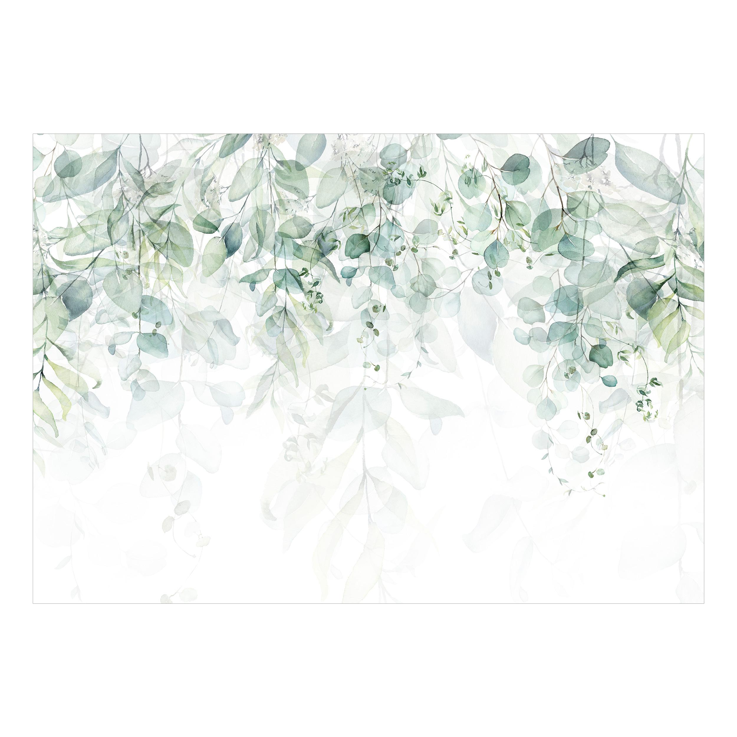 Effet Nature Papier peint Mur Images XXL Salon Nappes Papier peint Feuilles Aquarelle
