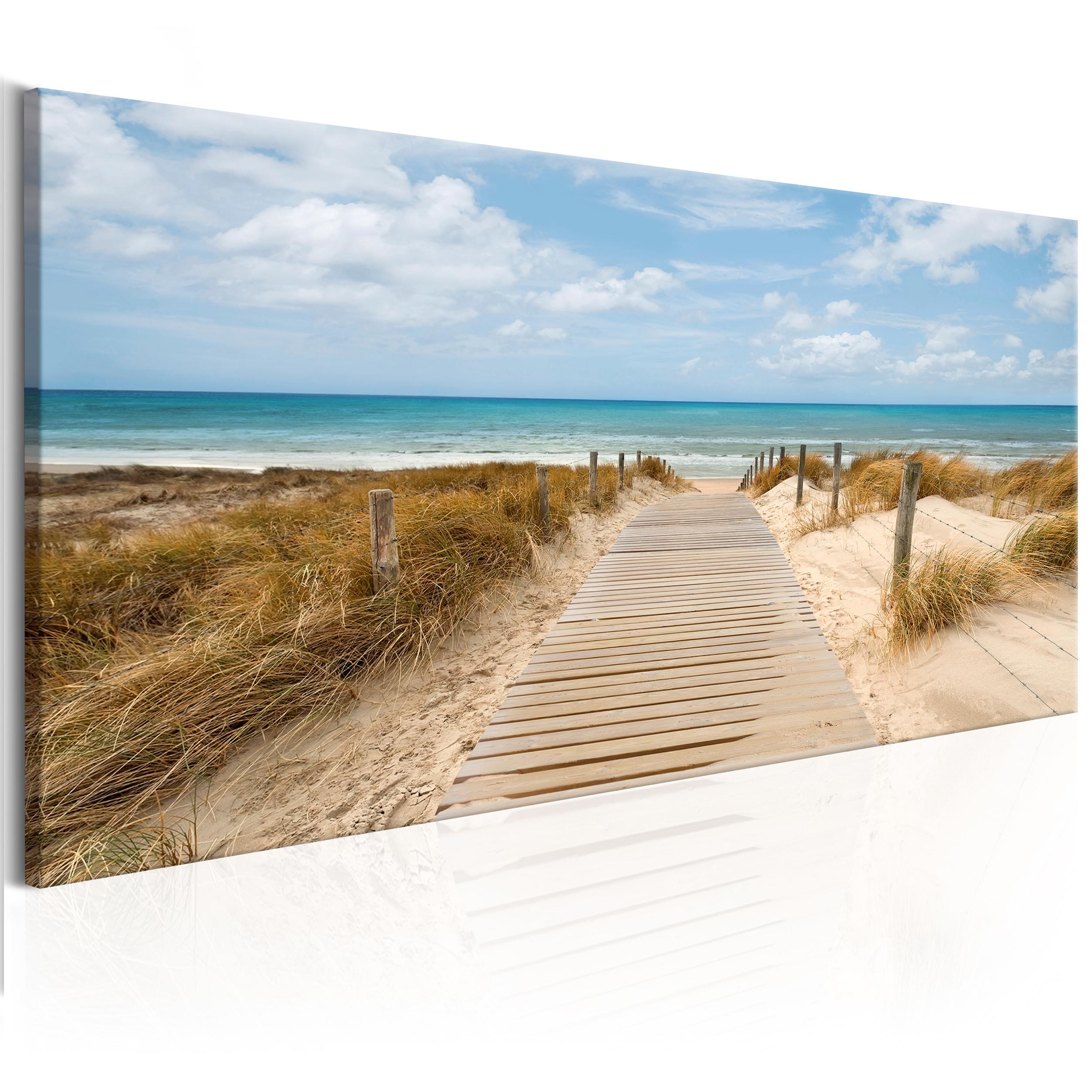 Bilder leinwand bild wald strand meer natur landschaft for Bilder wandbilder