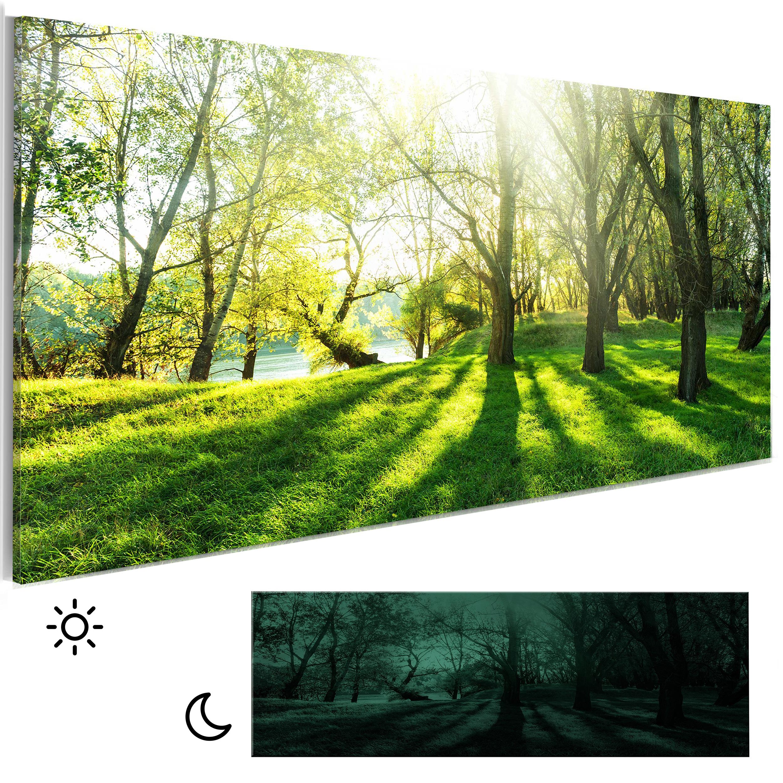 bilder leinwand bild blumen wald natur nachleuchtend leuchtbilder wandbild ebay. Black Bedroom Furniture Sets. Home Design Ideas