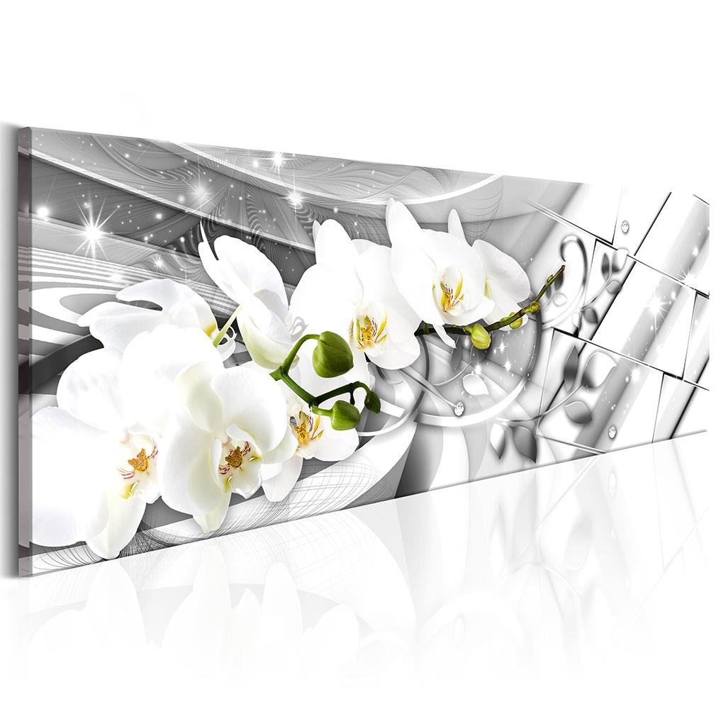 leinwand bilder blumen rose wei orchidee lilie rosa wandbilder xl gro e auswahl ebay. Black Bedroom Furniture Sets. Home Design Ideas