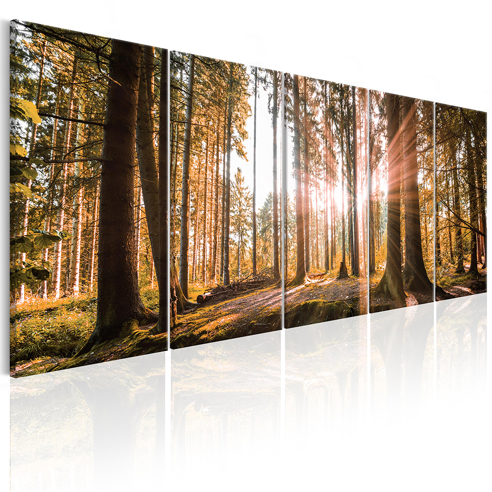 leinwand bild wald strand meer sonnenuntegang natur wandbilder xxl gro e auswahl ebay. Black Bedroom Furniture Sets. Home Design Ideas