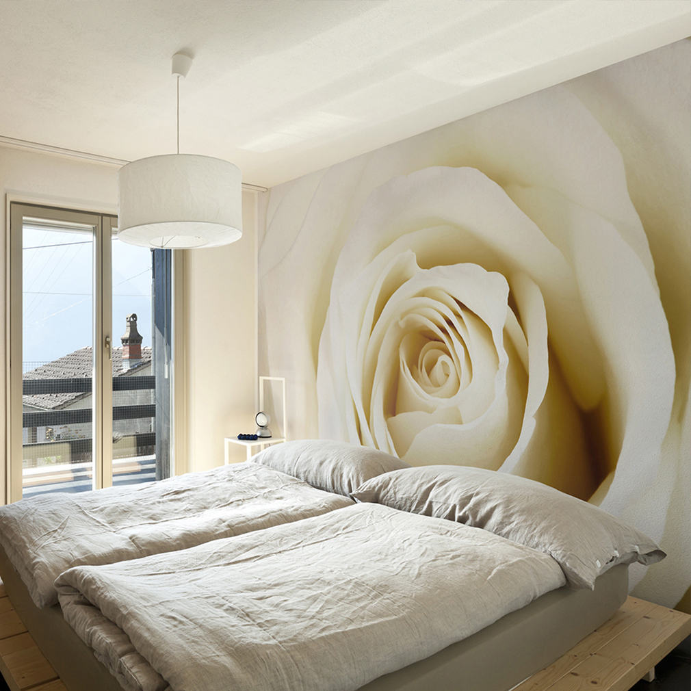 vlies fototapete blumen rosa rose cremig natur wand tapete. Black Bedroom Furniture Sets. Home Design Ideas