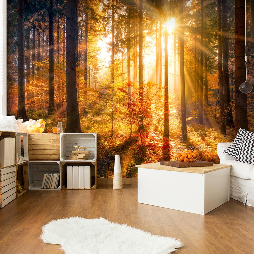 VLIES FOTOTAPETE Wald TAPETE Sonne Herbst gold TAPETEN Schlafzimmer ...