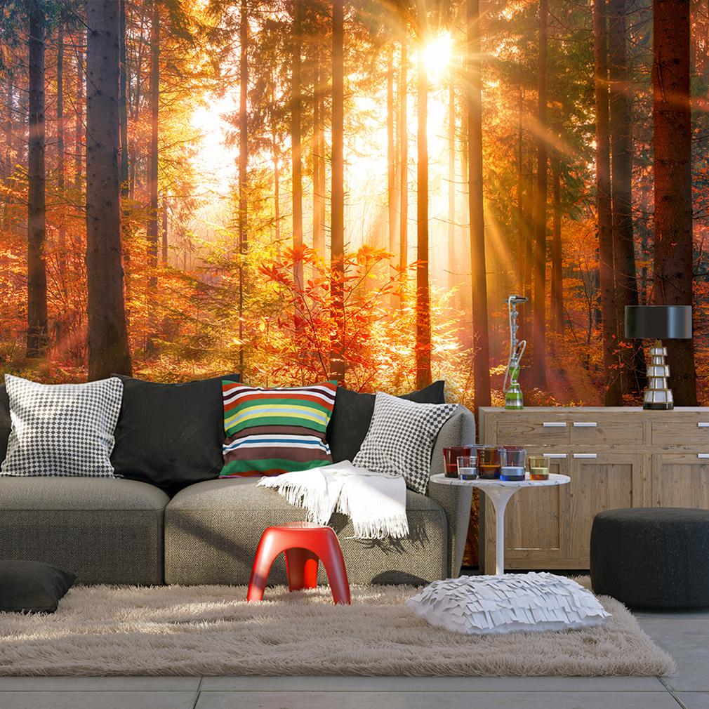 VLIES FOTOTAPETE Wald TAPETE Sonne Herbst Gold TAPETEN